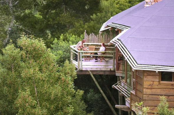 Guest enjoying the luxury at Tsala Treetop Lodge.